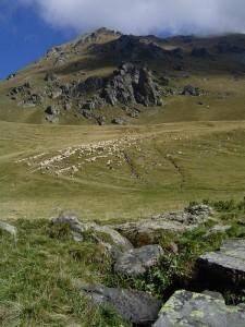 Budimirov Grob